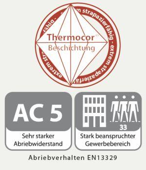 Thermocor Beschichtung
