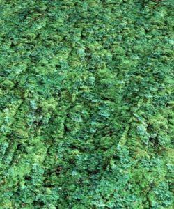 bodencouture-vinyfit-mint-flaechenbild